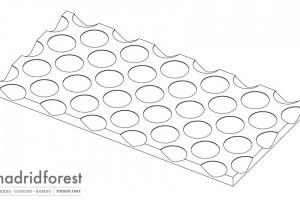 wmadridforest4